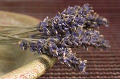 Getrocknetes Lavendelbündel Stockfoto