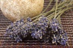 Getrocknetes Lavendelbündel und -seife Stockfoto