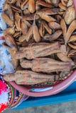 Getrocknetes Nariphon trägt für Verkauf am Amulettmarkt, Thailand Früchte T lizenzfreies stockfoto