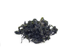 Getrocknetes seawead Stockfotos