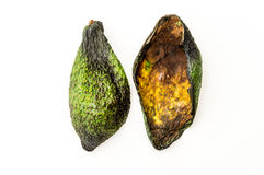 faule avocado stockfoto bild 53754833. Black Bedroom Furniture Sets. Home Design Ideas