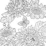 Getrokken de chrysant bloeit zwarte witte vector stock afbeeldingen