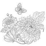Getrokken de chrysant bloeit zwarte witte vector stock afbeelding