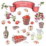 Getrokken de hand kleurde schets van verschillende voorwerpen, roze malusbloemen, rode appelen, mand, fles en band op witte achte royalty-vrije illustratie