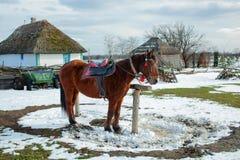 Getrokken door een paard Stock Afbeelding