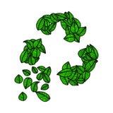 Getrokken groene bladeren van de illustratie recycleren de vectorkrabbel hand embleem, stock illustratie