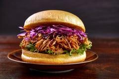 Getrokken Varkensvleeshamburger Stock Fotografie