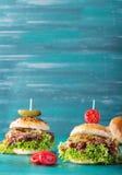 Getrokken Varkensvleeshamburger Stock Afbeeldingen