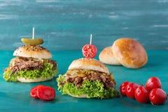 Getrokken Varkensvleeshamburger Stock Foto's