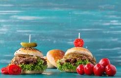 Getrokken Varkensvleeshamburger Royalty-vrije Stock Fotografie