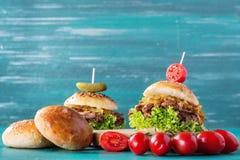 Getrokken Varkensvleeshamburger Stock Afbeelding
