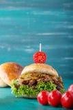 Getrokken Varkensvleeshamburger Royalty-vrije Stock Afbeelding