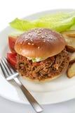Getrokken varkensvleessandwich stock afbeelding