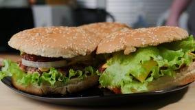 Getrokken varkensvleessandwich Horizontaal voedsel, royalty-vrije stock foto's