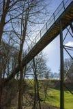 Gettare un ponte sulla valle boscosa immagini stock libere da diritti