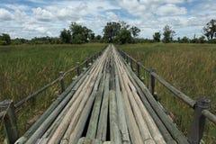 Getti un ponte su in Moremi 2 immagini stock