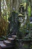 Getti un ponte su nella foresta delle scimmie in Ubud, Bali, Indonesia Immagine Stock