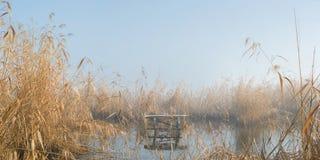 Getti un ponte sulla banchina di pesca nella nebbia nell'inverno Immagine Stock