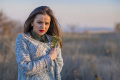 Getting cold in a field. Stock Photos