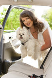 Getting dog into a car Royalty Free Stock Photography