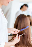 Getting a haircut Royalty Free Stock Photography