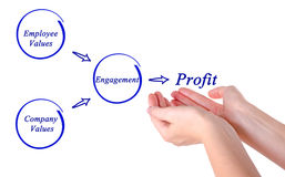 Getting profit from engagement. Diagram of getting profit from engagement Royalty Free Stock Photo