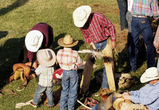 Getting Ready. Rodeo riders getting ready to perform Royalty Free Stock Image
