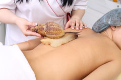 Getting snail skin cleaning at beauty salon. Royalty Free Stock Photo