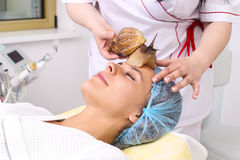 Getting snail skin cleaning at beauty salon. Royalty Free Stock Photography