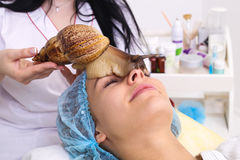 Getting snail skin cleaning at beauty salon. Royalty Free Stock Images
