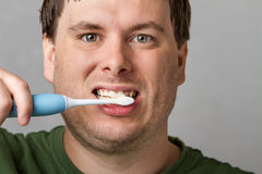 Getting those teeth nice and clean Royalty Free Stock Photography
