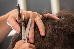 Getting a trim Stock Photos