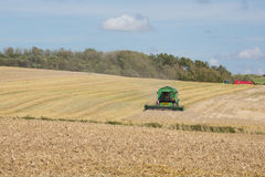 Getting the wheat harvest in Royalty Free Stock Images