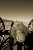 Gettysburg cannon Stock Image