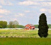 Gettysburg parkerar den nationella militären - 111 Fotografering för Bildbyråer