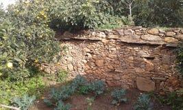 Geummauerter Garten Stockbild