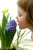 Geur van de lente Royalty-vrije Stock Afbeeldingen