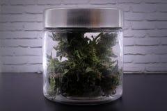 Geurige marihuanaknoppen in glaskruik stock afbeeldingen