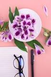 Geurige thee in een witte kop, mooie bloemen, een roze achtergrond, een notitieboekje met een pen en glazen stock foto
