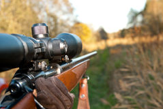 gevär Royaltyfria Bilder