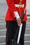 gevär för fotguardhand royaltyfria bilder