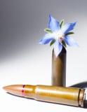 Gevärkula och en blommakula Arkivbild