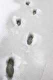 Gevaarlijk afbrokkelend ijs tijdens de dooi Stock Foto's