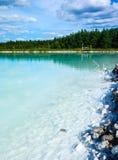 Gevaarlijk alkalisch meer met bos stock foto's