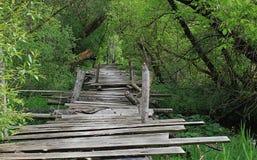 Gevaarlijk indien gebroken houten brug Royalty-vrije Stock Foto