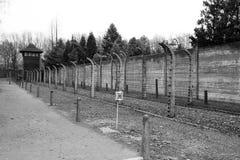 Gevaarlijk nazisme stock foto