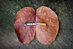 Gevaarlijke sigaret Stock Afbeeldingen