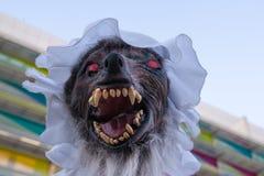 Gevaarlijke slechte die wolf als grootmoeder wordt vermomd om Rood weinig te bedriegen Royalty-vrije Stock Foto's