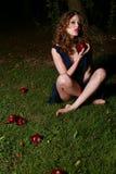 Gevallen appelen royalty-vrije stock foto