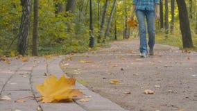 Gevallen blad die op de weg in het park liggen stock video